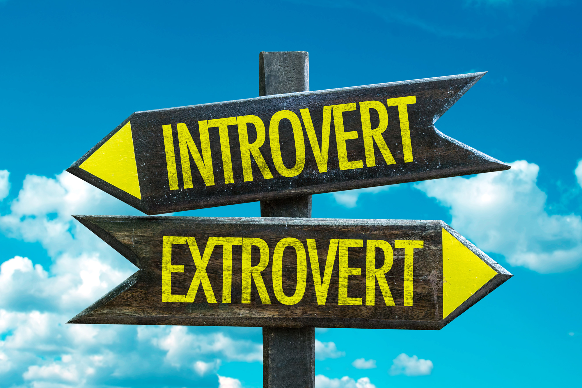 Introvert - Extrovert Who's More Creative