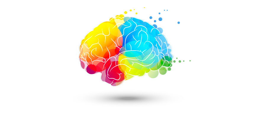 A colourful brain